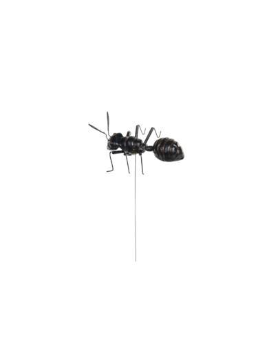 Mrówka Mała na piku - Dekoracja